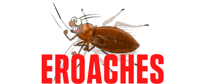 Cockroach Guide