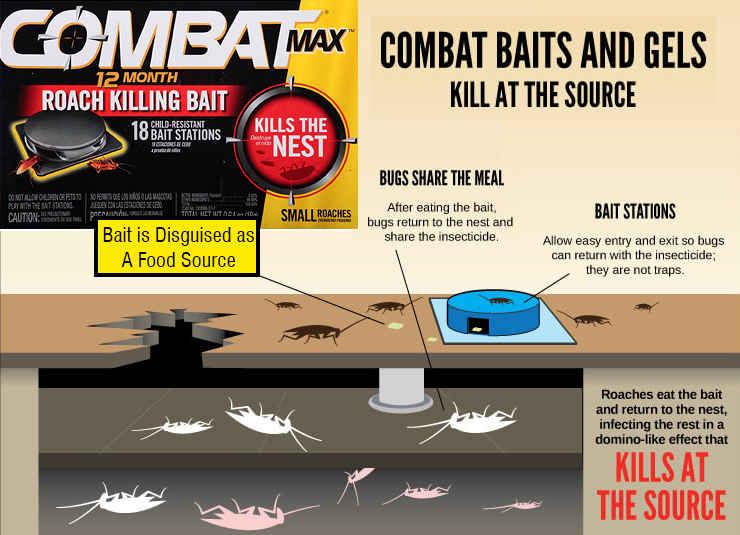 Combat Max Roach Bait Review