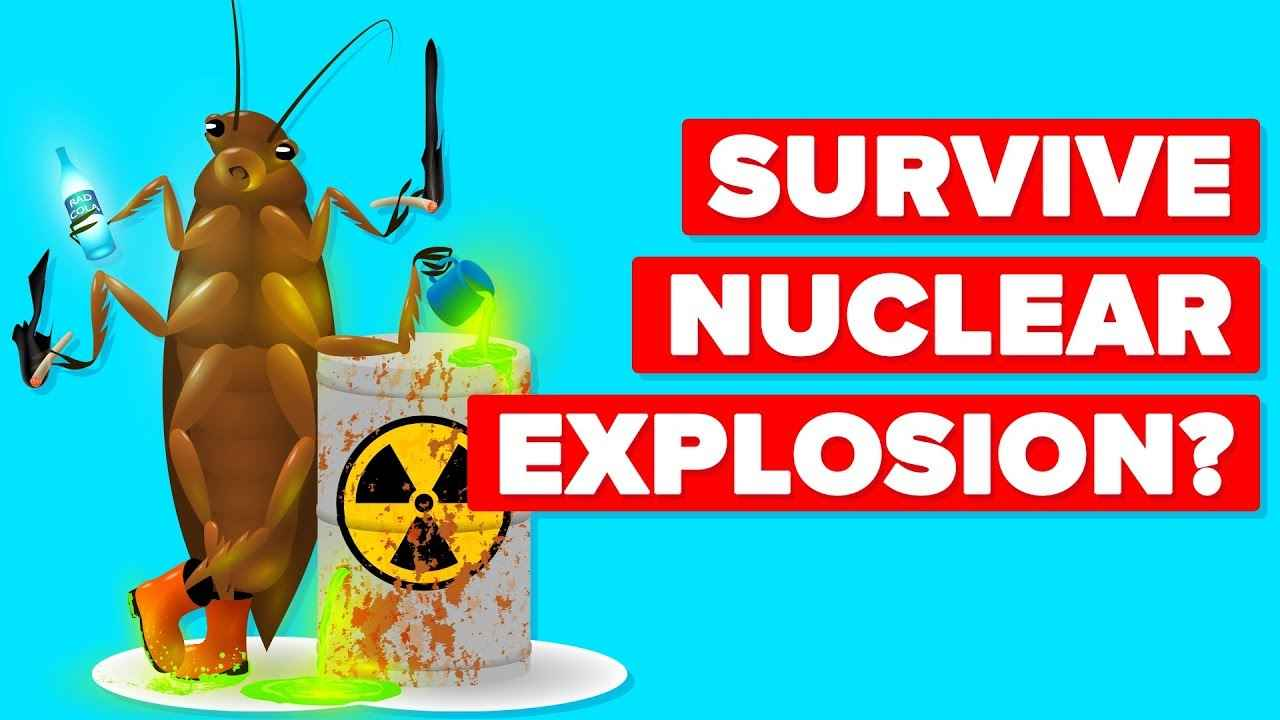 How Can Roaches Survive a Nuclear Bomb